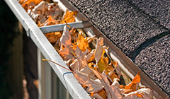 gutter leaf guards